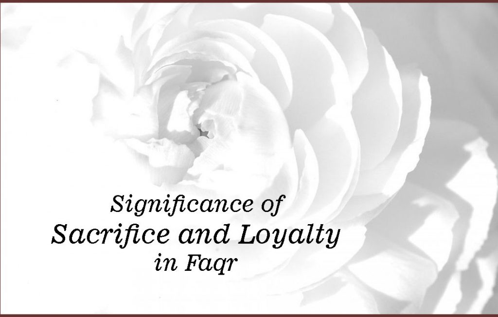 Significance of Sacrifice and Loyalty in Faqr-6